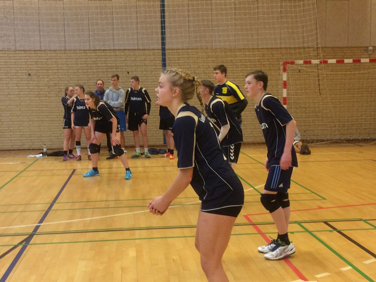 volleyball flensburg